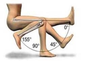 Knee movement